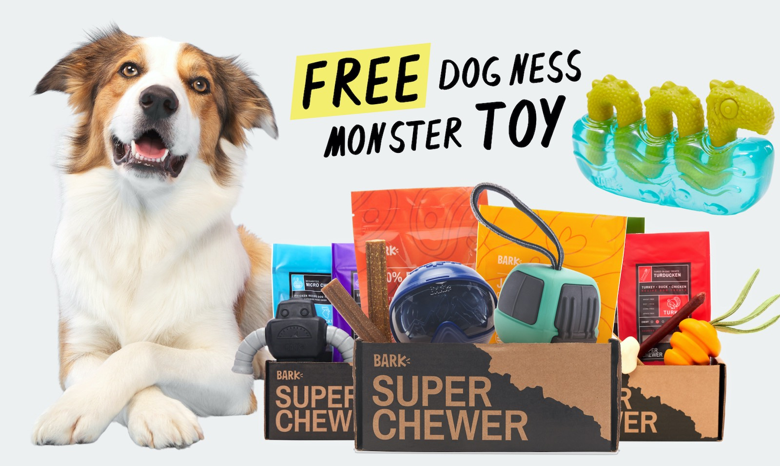 Super Chewer, a themed collection of tough toys, treats, and chews starting at $30 per month